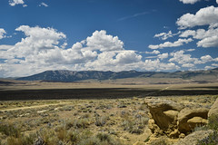 Bighorn Basin (cutthroatsrule) Tags: sandstone desert basin wyoming yucca