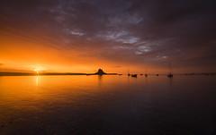 Holy Morning (Tracey Whitefoot) Tags: tracey whitefoot 2016 northumberland holy island lindisfarne sunrise dawn castle coast coastal reflection reflections summer