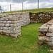 20160714-IMG_6496 Barracks Chesters Roman Fort Hadrians Wall Northumberland.jpg