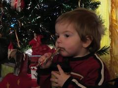 Christmas 2011 015 (livesthislife) Tags: christmas2011