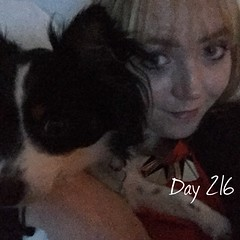 "Project 365(+1) - Day 216 ""Snuggles with this one after work"" (sophie_close) Tags: day216 365project project365"
