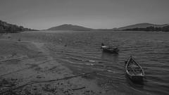 (25/62) Minho (ponzoosa) Tags: portugal minho mio rio river barcas bn bw alga desembocadura