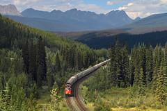 Approaching Geikie (Moffat Road) Tags: canadiannational cn potashtrain unittrain potash curve mountains trees geikie alberta cnalbredasubdivision train railroad locomotive canada ab jaspernationalpark