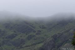 Misty Mountains, Munnar - Breath Taking Spots (Dinesh flicks) Tags: munnar munnarphotos munnarscenaries munnartouristspot devikulam topstation amaravathidam chinnarwildlifesanctuary thekkady dinesh photography kerala