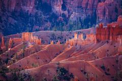 Hoo Doo's Bryce Canyon (jetguy1) Tags: brycecanyon hoodoos bryce desert rock redrock utah nationalpark