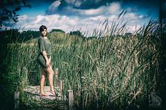 In the Green (CJ Schmit) Tags: wwwcjschmitcom 5dmarkiii canon canon5dmarkiii cjschmit cjschmitphotography canonef85mmf18usm photographermilwaukee milwaukeephotographer photographerwisconsin dragonspitstudios modelshoot milwaukee wisconsin stateforest havenwoodsstateforest havenwoods karaschuh dress legs nature landscape sexy trees field summer fall sunny naturallight reflector grass clouds sky outdoors woman female pier reeds nikanalogefex2 green outside