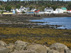 Westport Low Tide (tvordj) Tags: brierisland novascotia oceanscape piers towns