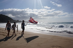 DSC05257 (neilreadhead) Tags: awt1 hawaii oahu waimeabay