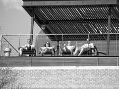 Mockingbird Station / Dallas, Texas, 2015 (STREET MASTER) Tags: street chris blackandwhite blackwhite dallas downtown texas candid streetphotography documentary richey streetphotographer streetcandid candidstreet candidstreetphotography streetmaster wwwchrisricheycom christopherricheyphotography chrisricheyphotography vivianmaierstyle chrisrichey photographybychristopherrichey dallasstreetphotography dallasstreetphotographer photoshotbychristopherrichey photoshotbychrisrichey