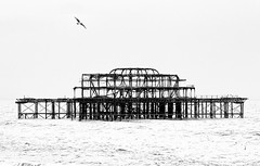 West Pier (loobyloo55) Tags: uk bw sussex mono pier rust brighton structure westpier highkey
