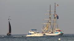 Sail 2013 (Erich Kuhfeld) Tags: warnemünde sail hansesail wilhelm greif pieck segelschulschiff