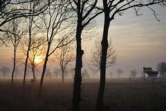 Ostfriesland 03-2015 Morgen 3 (dirk.menker) Tags: sony 55mm ostfriesland sonnenaufgang a7 gegenlicht 2015