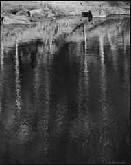 Mamiya RZ (mediaoleg) Tags: christmas street new leica old bridge pink blue autumn trees winter red sea summer sky bw orange sun white house lake snow cinema blur flower tree green art mamiya beach me nature water car yellow night clouds analog zeiss canon river garden landscape mar waterfall seaside nikon dof pentax takumar harbour sony samsung paisaje olympus panasonic casio hasselblad contax shore cielo carl sakura fujifilm genius kiev yashica ricoh rz suset liht sumicron sumilux anamorfot 模糊了我的模擬櫻花瀑布港岸秋自由度paisaje馬塞洛海邊日落海灘水天空花紅藍性質夜樹白綠雪藝術光太陽雲冬季街道景觀樹木夏天海黃聖誕湖橋河粉色房子車子體重新老桔園我