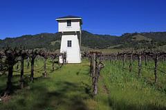 Vineyard Tower (JB by the Sea) Tags: california vineyard sonoma winery sonomacounty winecountry healdsburg march2015