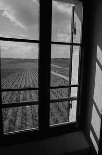 2015-04 Bordeaux Primeurs-128