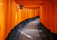 Torii Tunnel (fantommst) Tags: orange mountain japan kyoto shrine inari gates tunnel lantern torii taisha fushimi kyotoprefecture fushimiku kyotoshi ef1635mmf28liiusm canoneos5dmarkiii lisaridings fantommst