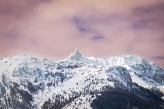 La dent du ratier (Maxime Bonzi) Tags: alpes photo image dent hautes queyras vallée arvieux ratier fontouse
