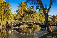 Bosques de Palermo (FlavioSpezia) Tags: lago palermo bosques d40