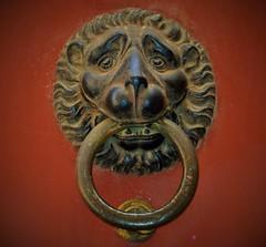 Det något bedrövade lejonet (lena.fredin) Tags: detaljer fotosondag fs150503