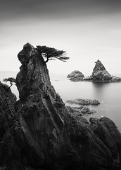 A Dream within a Dream (hiromichiendo) Tags: longexposure blackandwhite bw seascape abstract tree art nature monochrome japan landscape still rocks fineart silence zen nd minimalism tranquil