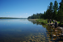 Mississippi River Headwaters (mike_jacobson1616) Tags: itascastatepark itasca minnesotastatepark minnesota pines whitepine mississippiheadwaters