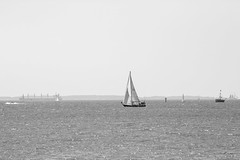 untitled (robwiddowson) Tags: boat boats yachts yacht yachting annapolis maryland us usa united states america unitedstatesofamerica water ocean sea 400mm canon 5d mk iii mark 3 robertwiddowson blackandwhite photo photograph photography image picture