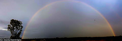 7-15-16 Rainbow (Dan's Storm Photos & Photography) Tags: sky nature rain weather clouds skyscape landscape landscapes rainbow rainbows skyscapes rainshowers rainshaft rainshafts