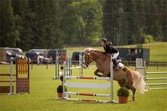 Go,go (Basri Ahmedov) Tags: horse pferd hevonen lohja suomi finland canon 5d3 70200 28