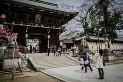 Japan Kyoto . . Tenman-g  DSC_5770 (Ming - chun ( very busy )) Tags:  tenmang blossom   travel    japan kyoto nikon d800 f18   road  50mm nikkor       kitano traveljapan streetscence streetshot streetsnap   28mmf18 28mm f1828mm nikon28mmf18