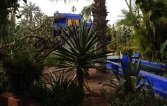 DSCN2673 (dbohaty) Tags: jardin majorelle morocco almaghrib
