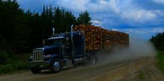 John Barker (jr-transport) Tags: peterbilt 367 manac logging barker trailer ontario heavy offroad
