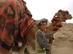 Young Afghan Nomad. (UN Assistance Mission in Afghanistan) Tags: 20160826 26august2016sarepollsancharak26august2016 sarepollsancharak sarepoll sancharak afghan afghanistan myafghanistan photo photos un unama featured featuredatinstagram featuredatunamainstagram featuredatunamanewsinstagram featuredphotos featuredphotosatunamainstagram instagram instagramfeatured news photosusedatinstagram unamanews unamanewsinstagram unamanewsinstagramfeatured used usedatinstagram unitednations flickr facebook unamaflickr unamafacebook unamatwitter unamaunmissions missions dailylife sliceoflife 2016 august health work camel nomad conflict landmines drought saripul child children boy rural animal transport nasimfekrat afg