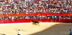 Running the Bulls (jchmfoto.com) Tags: tradition spain castileandlen mammal people farmanimals bull europe medinadelcampo valladolid animal gente toro tradicin es