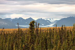 081616 - Glaciers ruin nice shot of powerlines (Nathan A) Tags: alaska ak chugach nature scenery outdoors outside glacial glacier ice