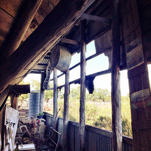 From inside Lois's Shed: French Island.