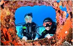 March 28, 2015 10:05 AM (Ocean Explorers St. Maarten) Tags: borderfx