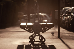 Holy Seat! (GG_Abitbol) Tags: light paris loss monster contrast canon outside golden spring natural bokeh pigeon holy hour sit m42 flare xv pentacon f4 banc 200mm 450d