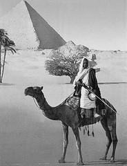 02_Giza Necropolis - Pyramid of Cheops (usbpanasonic) Tags: man desert northafrica egypt nile cairo camel nil giza tombs egypte gizeh ancientegypt cheops  caire khefren misr pyramidsofgiza masr gizanecropolis khafra ancientcivilizations pyramidroad