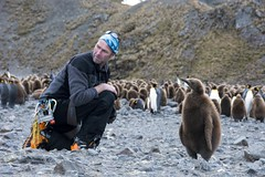 Having a chat :) (sylweczka) Tags: snow ski expedition animals penguin glacier adventure shackleton touring skitouring kingpenguin sylweczka southgerogia