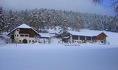 Laerchhof im Winter