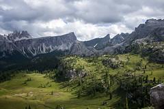 La Croda da Lago (querin.rene) Tags: trekking sentiero belluno dolomiti veneto cinquetorri escursione passogiau crodadalago qdesign renéquerin