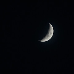 Fri 23-Apr (113 / 365 / 2015) - The moon from earth (Steev McAlister) Tags: moon ecology day event environment 365 dates edition environmentalism ecosystem day113 113 2015 113365 day113365 365the2015edition 3652015 23apr15