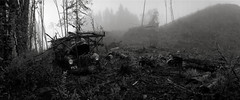 Ruin, Oregon (austin granger) Tags: film fog oregon forest entropy cabin time decay destruction ruin logging noblex memory impermanence change topography austingranger