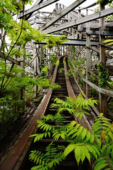 Dreamland - Aska Rollercoaster (jgazzignato) Tags: japan nara dreamland