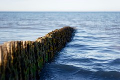 Groyne at Rosslare (reflectionghost) Tags: ireland sea summer seascape seaweed beach sunshine canon sand waves canon20d horizon wexford groyne rosslare 50mm18 niftyfifty