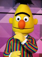 Bert (meeko_) Tags: bert muppet sesamestreet characters buschgardenscharacters muppetcharacters elmo rocks elmorocks show entertainment sunnydaytheater sesamestreetsafarioffun busch gardens tampa africa buschgardens buschgardenstampa buschgardenstampabay buschgardensafrica themepark florida