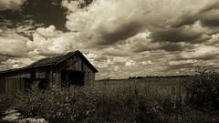 Years passed. (+Lonnie & Lou+) Tags: blackandwhite decay sky bw tennant sony nisi ohio travel usa nature clouds abandoned barn old day