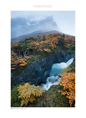 A wild place (www.sicilylandscape.com) Tags: torresdelpaine patagonia cile chile miradorfrances vallefrancs riofrances