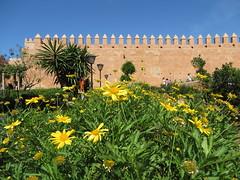 Rabat kasbah des Oudaya_0568 (JespervdBerg) Tags: holiday spring 2016 africa northafrican tamazight amazigh arab arabic moroccanstyle moroccan morocco maroc marocain marokkaans marokko rabat qasbah kasbah qasba oudayas oudaias
