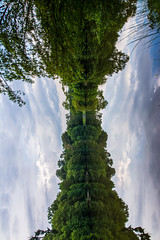 Vertical Abstract Panoramic Landscape of Reflective Water at Brensee (HunterBliss) Tags: abstract beautiful blue bright brensee cloud contrast europe foliage free germany green hiking horizon lake landscape leaves mirror natural nature outdoors outside park peaceful perspective plants reflection sky smooth still stuttgart summer symmetric tranquil travel trees unique vertical view warm water woods
